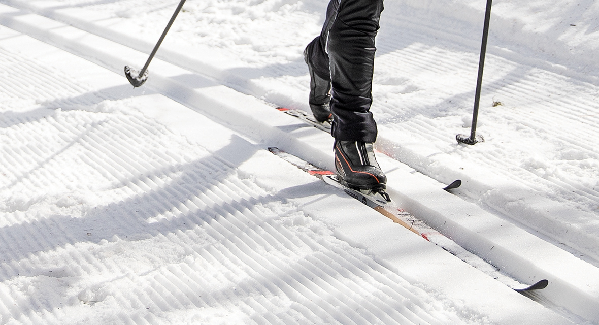 Cross-Country Skis
