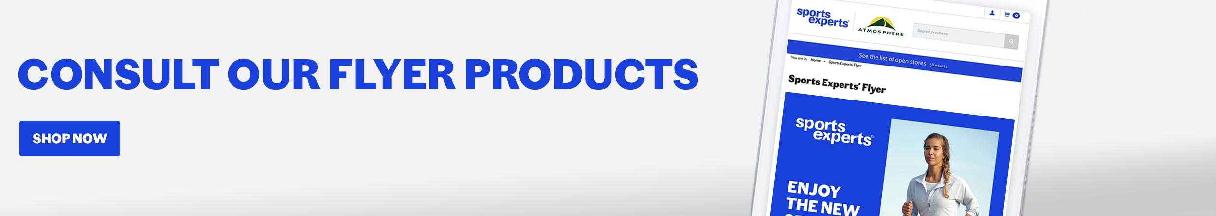 flyer products
