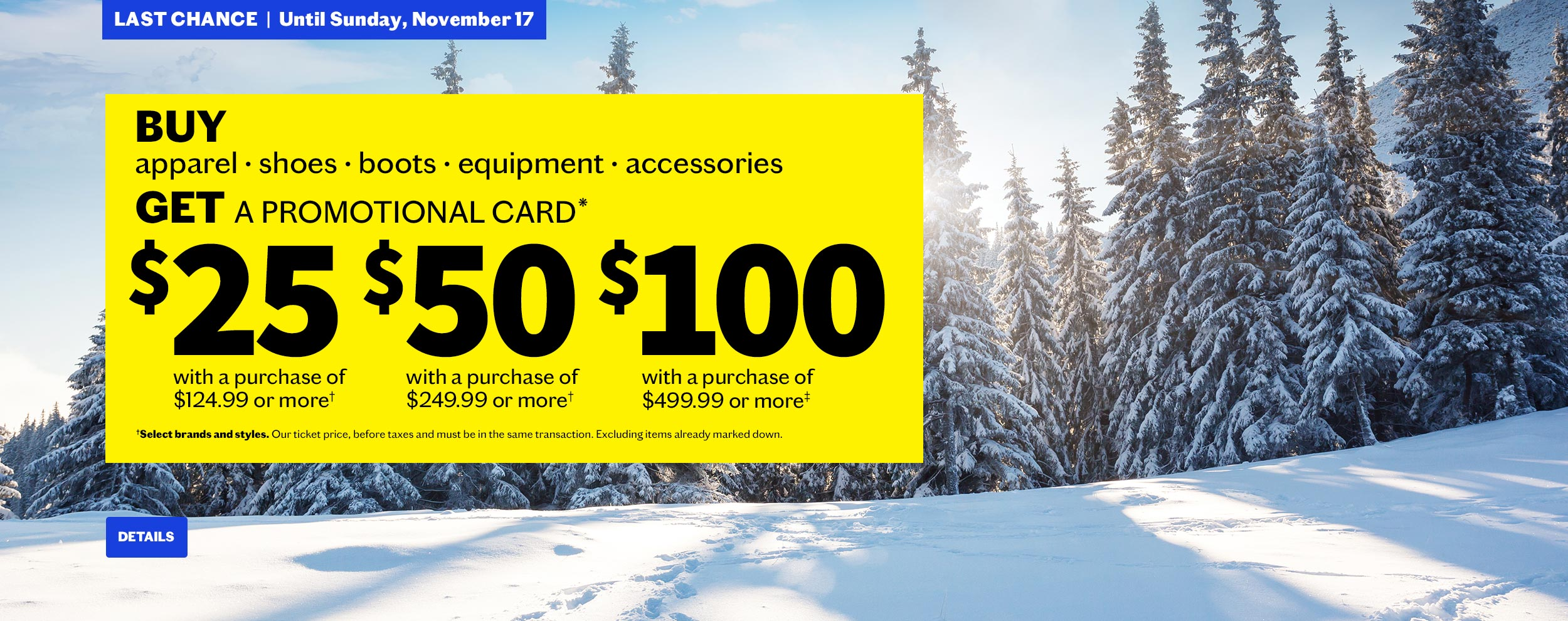 BUY & GET UP TO $100 IN PROMOTIONAL CARDS !